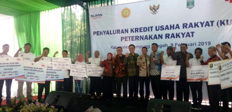 Dipusatkan di BRI Bandarjaya, KUR Lampung Tengah Disalurkan Rp1,9 M