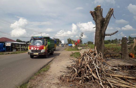 Diduga Tebangi Pohon dan di Jual, Masyarakat Seputihraman Resah Dengan Tindakan Camat