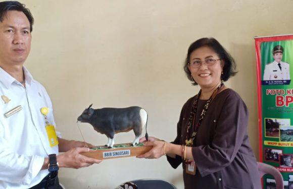 Upsus Siwab Terbesar se-Sumatera, Kepala BBIB Singosari Kunjungi Lamteng