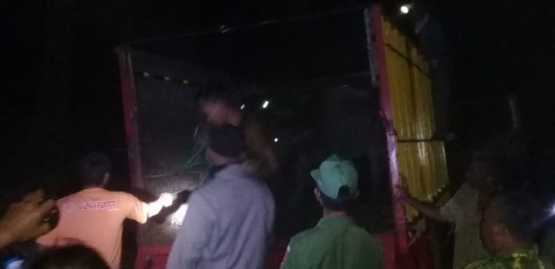 Ketahuan Warga, Pencuri Kerbau di Subangjaya Tinggalkan Mobil di Kebun Sawit