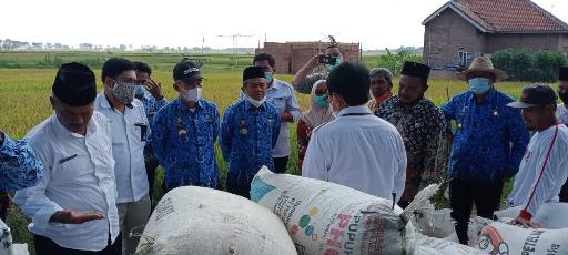 Petani Keluhkan BBM Jenis Solar, Ketua DPRD Lamteng akan Panggil Pemilik SPBU