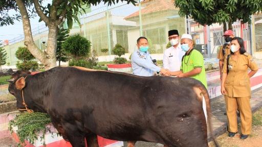 Lapas Gunungsugih Terima Bantuan Hewan Kurban dari Bupati Lamteng