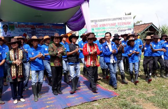 Peran Paveti Wujudkan Kampung Ternak di Lamteng